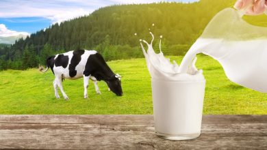 Photo of Drinking cows' milk during adolescence increases prostate cancer risk