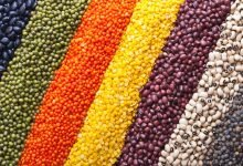Photo of The importance of pulses in the Mediterranean Diet