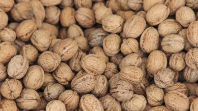 Photo of Major health benefits of walnut consumption